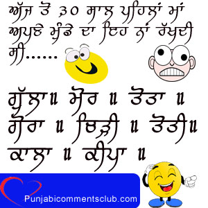 Funny Punjabi Jokes comments