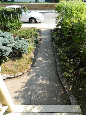 Leslieville Toronto fall clean up after by Paul Jung Gardening Services