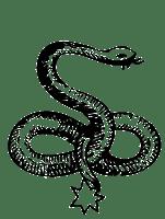 zalktis, grass snake, latvian folklore, latvian mythology, latviešu folklora, latviešu mitoloģija, capital r, 2018, drawing