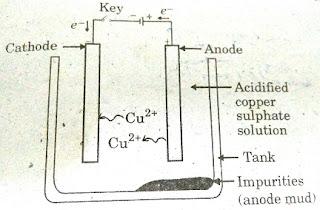 Cbse Ncert Solution - image