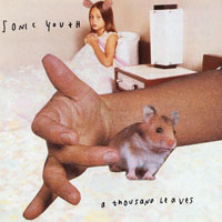 Worst to Best: Sonic Youth: 11. A Thousand Leaves