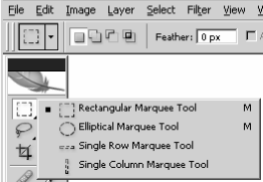 marquee tool photoshop