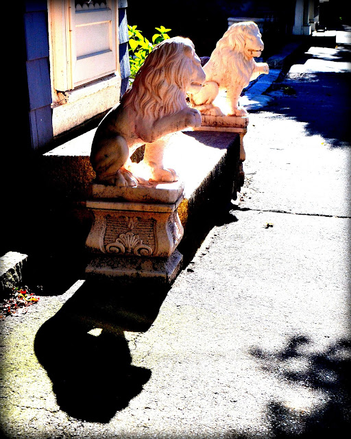 Lions, Sidewalk, Salem, Massachusetts, shadow