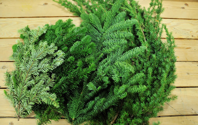 Holiday Greens from Pacific northwest