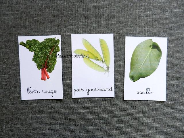 || Mise à jour des cartes de nomenclature - Légumes, féculents, aromates, condiments et épices