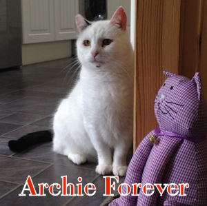 Archie Forever