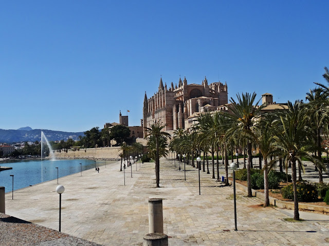okolcie katedry Palma de Mallorca, park z palm