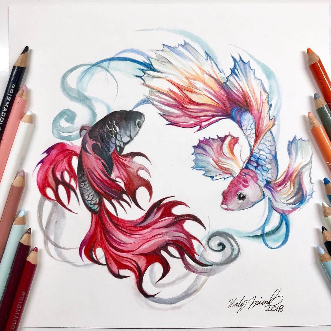 04-Betta-Fish-Yin-Yang-K-Lipscomb-Fantasy-and-Real-Life-Animal-Drawings-www-designstack-co