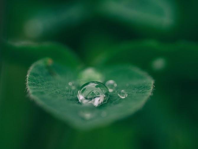 Manfaat Nyata Air Alkali Untuk Kulit Indah Nan Sehat