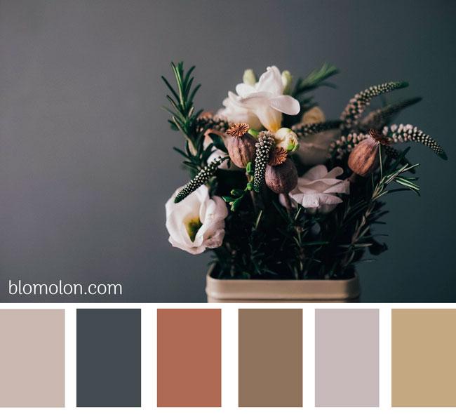 paleta-de-colores-imagen-1