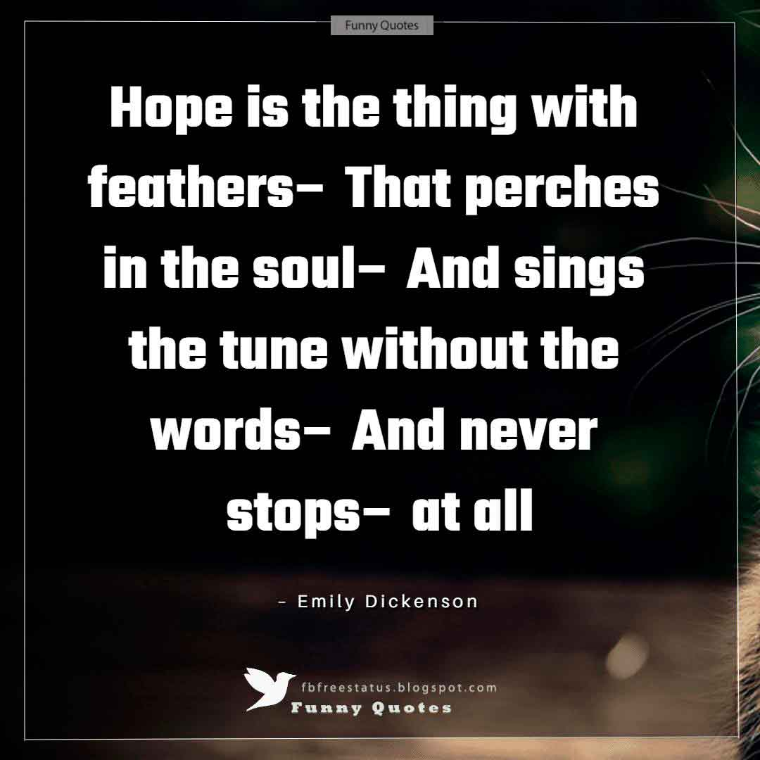 """Hope is the thing with feathers– That perches in the soul– And sings the tune without the words– And never stops– at all"" ~Emily Dickenson"