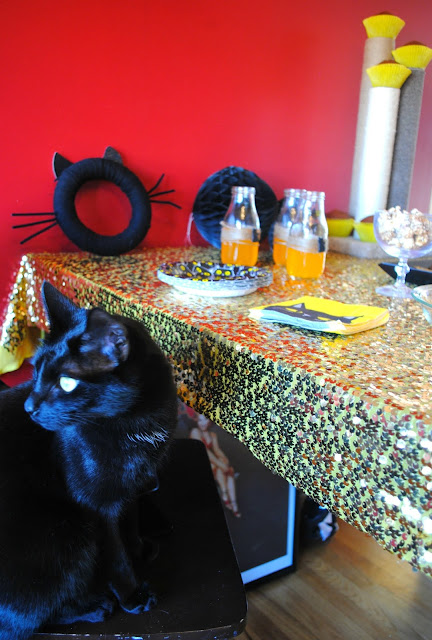 Black-cat-Halloween-party