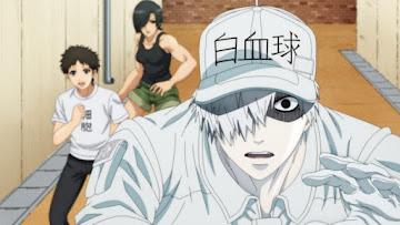 Hataraku Saibou!! Season 2 Episode 5