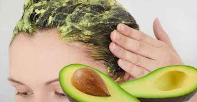 Tips Merawat Rambut Kering Kusam Secara Alami Tips Merawat Rambut Kering Kusam Secara Alami