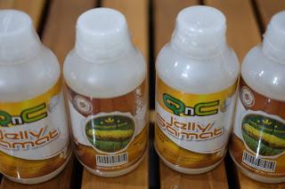 obat herbal ampuh untuk ginjal bengkak yang ada di apotik