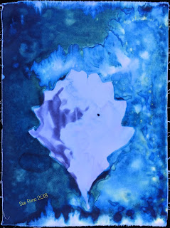 Wet cyanotype_Sue Reno_Image 463