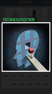Вставлять в мозг человека красного кубика,  психология в действии