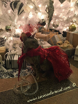 Coco Cornish Rex Christmas Couture Gown NYC