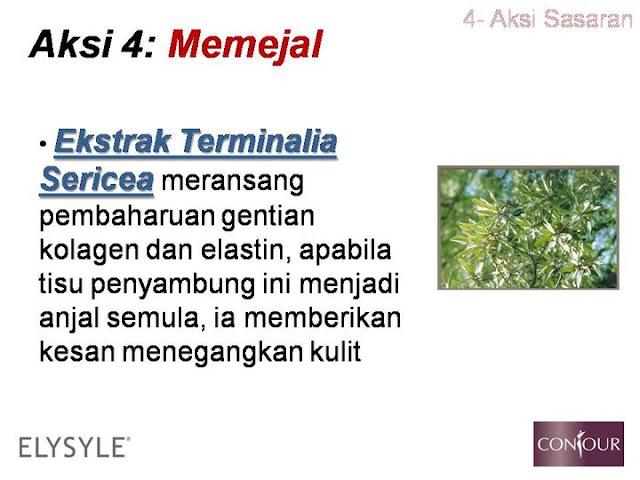 terminalia sericea,kolagen,elastin,selulit,slimming gel