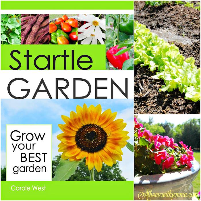 Startle Garden Book Giveaway