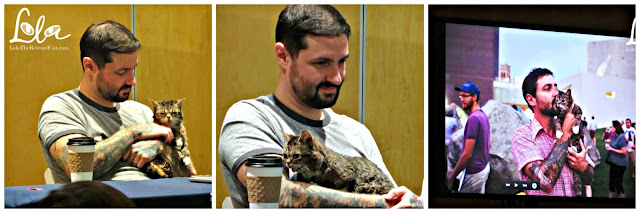 cat camp nyc|meow parlour|Lil Bub