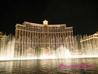 美國: Las Vegas, NV_表演篇