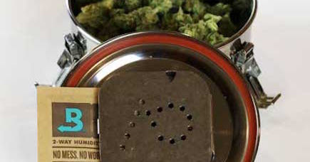 Your Cannabis Buds Deserve Boveda