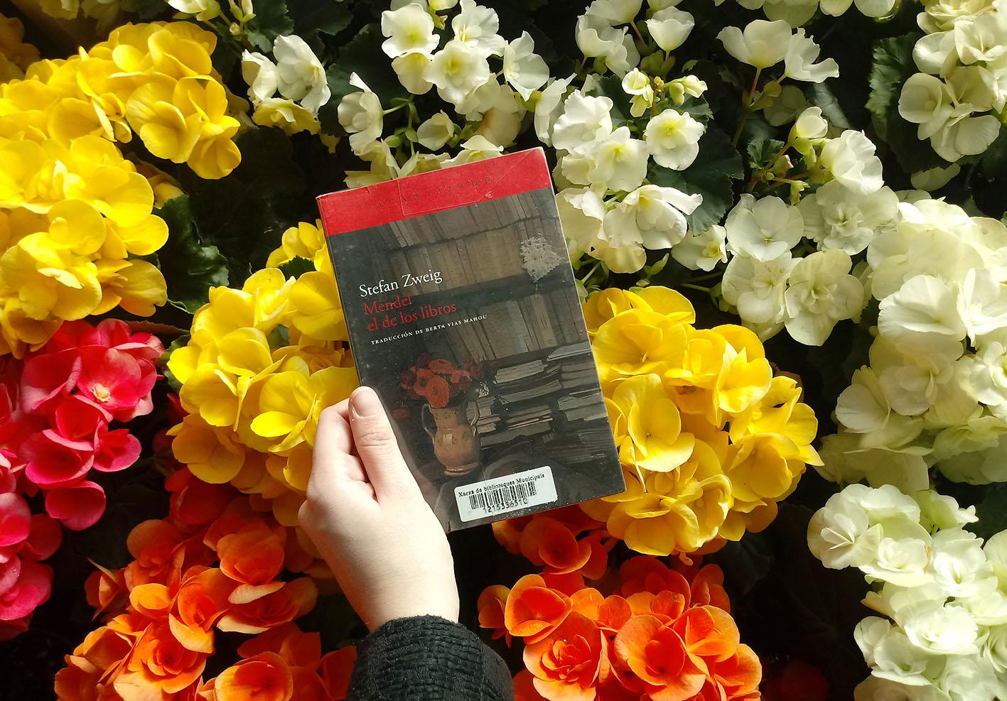 Mendel el de los libros Stefan Zweig