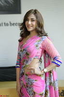 Actress Angela Krislinzki in Pink Saree Blouse Exclusive Pics March 2017 ~  123.JPG