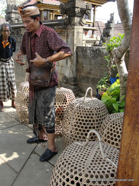 caged roosters in Penglipuran Village in Bali, Indonesia