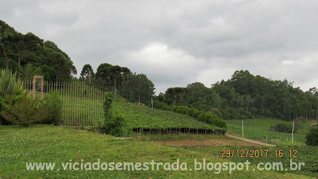 Otávio Rocha, Flores da Cunha, RS