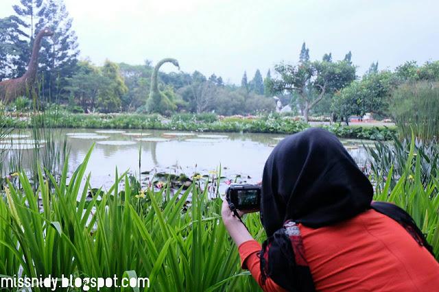 pengalaman ke taman bunga nusantara