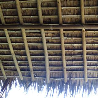 Cara Merawat Atap Alang - Alang