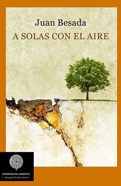 Portada de A solas con el aire de Juan Besada, donde se puede ver un precipicio que se está rompiendo y un árbol en la parte sólida.