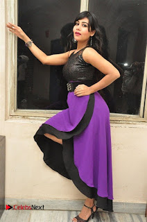 Telugu Actress Rachana Smith Stills at Money is Honey Audio Release  0082.jpg