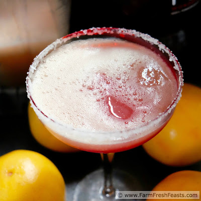 A recipe for a seasonal winter holiday cocktail--fresh grapefruit blended in a margarita and finished with a splash of pomegranate juice.