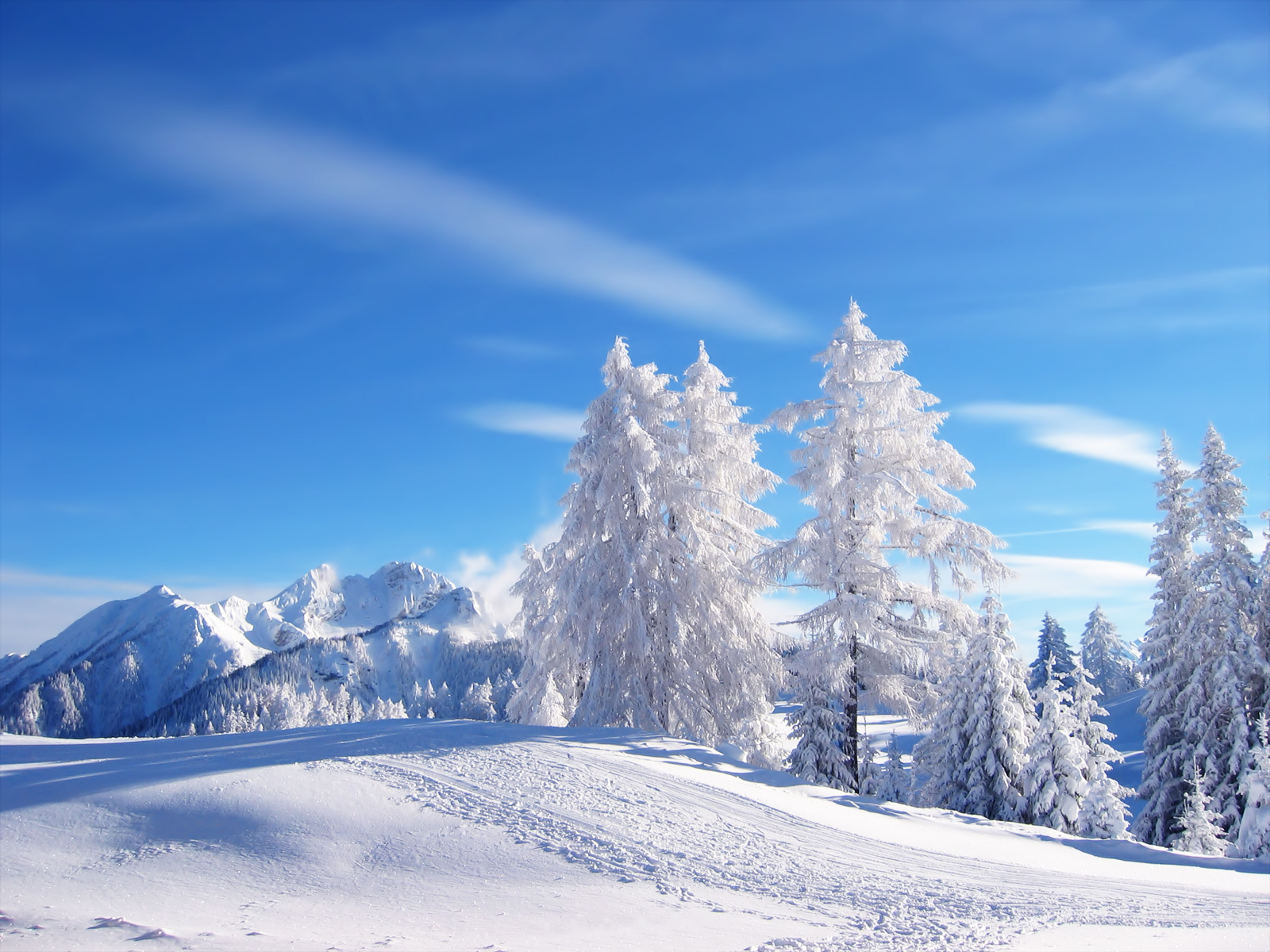 Winter Wallpapers HD: Free Winter Wallpapers HD