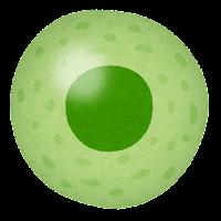 細胞のイラスト(緑)