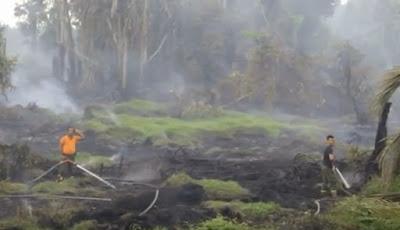 kebakaran hutan di kuansing