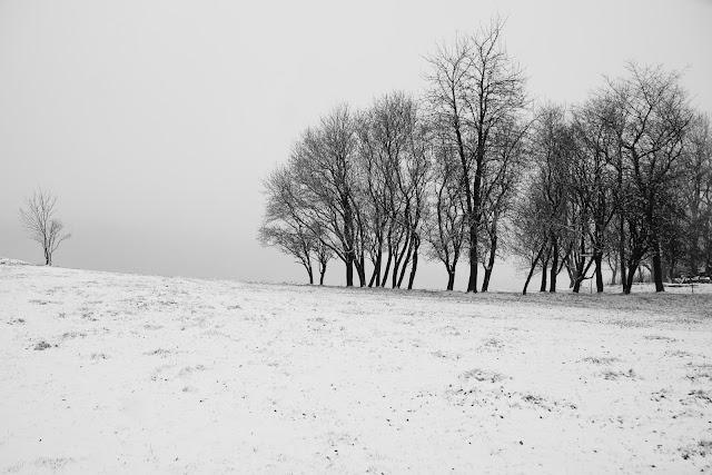 Czerwienne, Małopolska, Polska. Czarno-biała fotografia krajobrazu. fot. Łukasz Cyrus