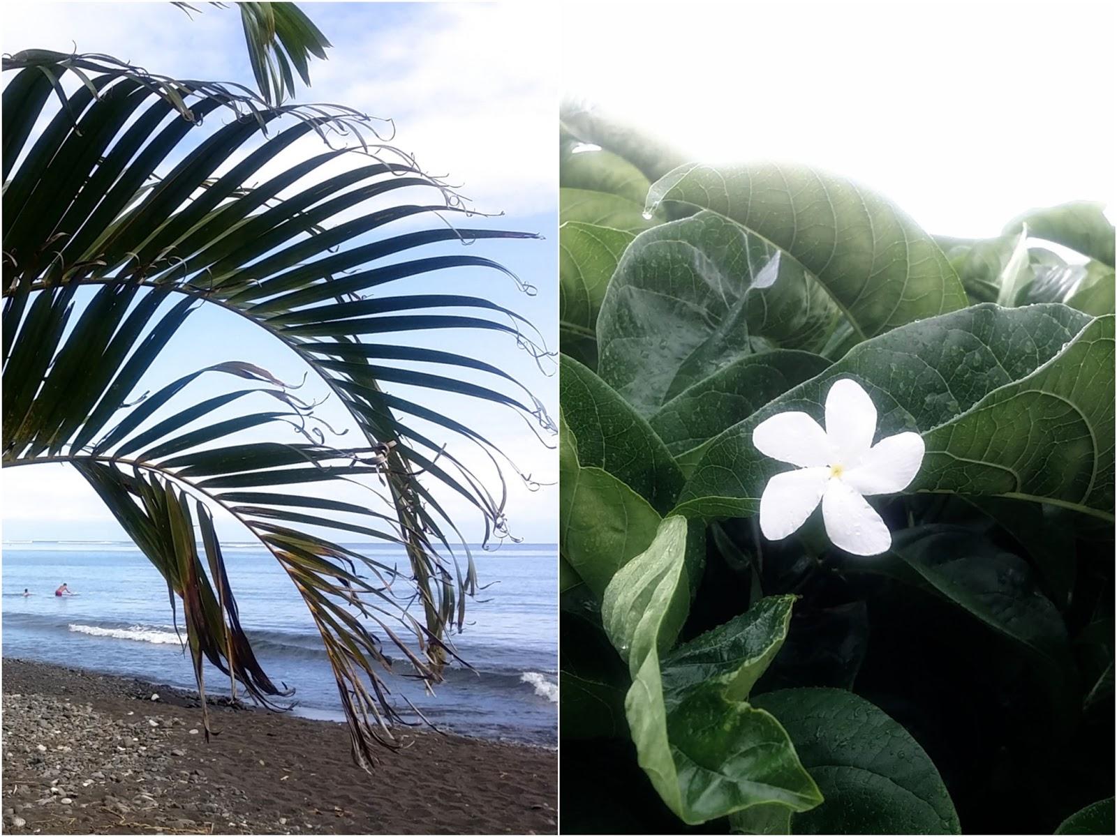 tahiti moorea french polynesia traveling