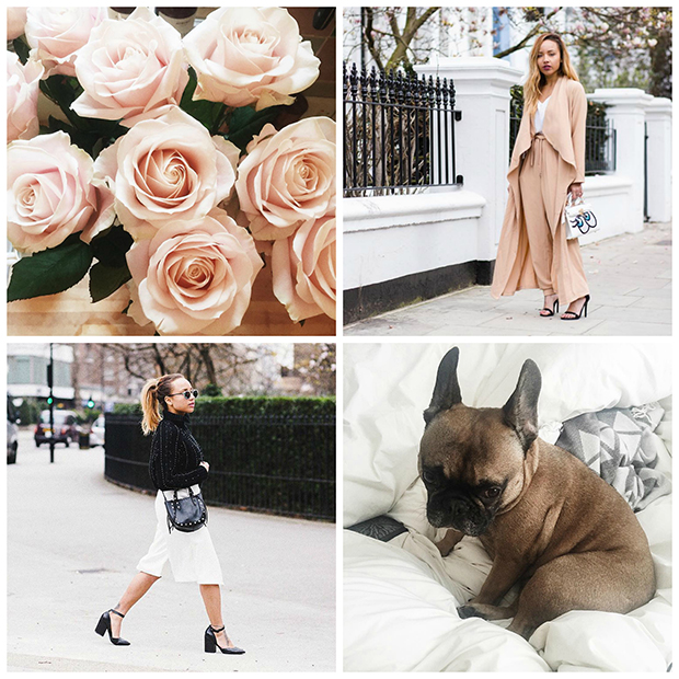 favorite Instagram accounts to follow