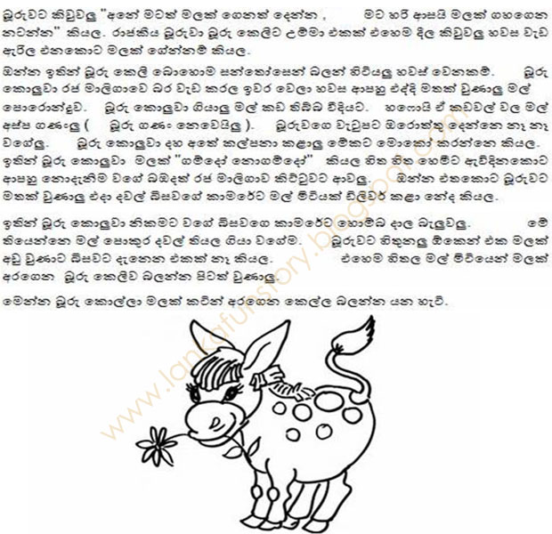 Sinhala Jokes-Donkey Girl-Part Two