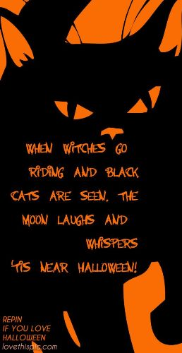 Nice Halloween Phrases Sayings Words Funny Quotes For Invitations