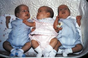 Image: Triplets, by Billy Alexander (ba1969) on freeimages