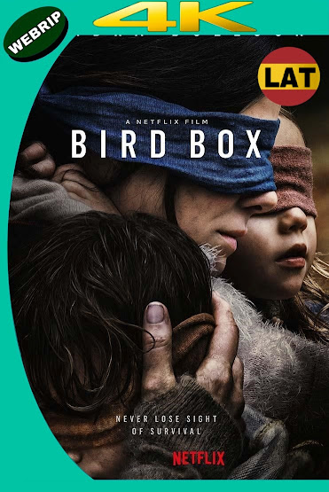 BIRD BOX: A CIEGAS (2018) WEBRIP 4K UHD LATINO-INGLES MKV