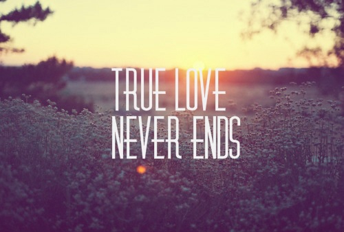 Top 100 true love status for whatsapp in english you will agree true love status for whatsapp in english altavistaventures Image collections