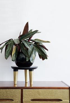 Soporte diy para plantas