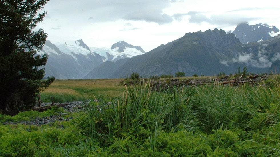 Northwestern Glacier (2005) - Photos of Alaska Then And Now. This is A Get Ready to Be Shocked When You See What it Looks Like Now.