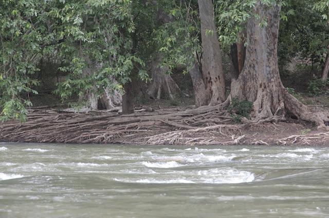 bord de riviere tamil nadu hogenakkal